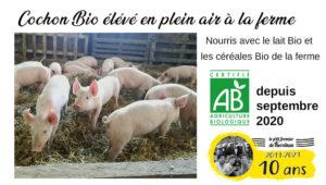 Septembre 2020 : Label Bio pour le cochon élevé en plein air