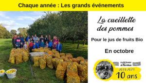 Les grands événements du P'tit Fermier de Kervihan : la cueillette des pommes